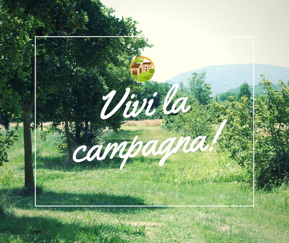Vivi la campagna! Live the countryside!