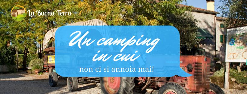 Un agri-camping per grandi e per piccini…in cui non ci si annoia mai!