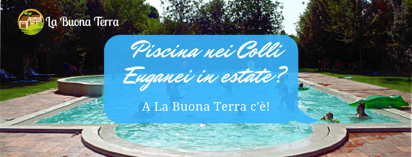 Piscina nei Colli Euganei in estate: a La Buona Terra c'è!