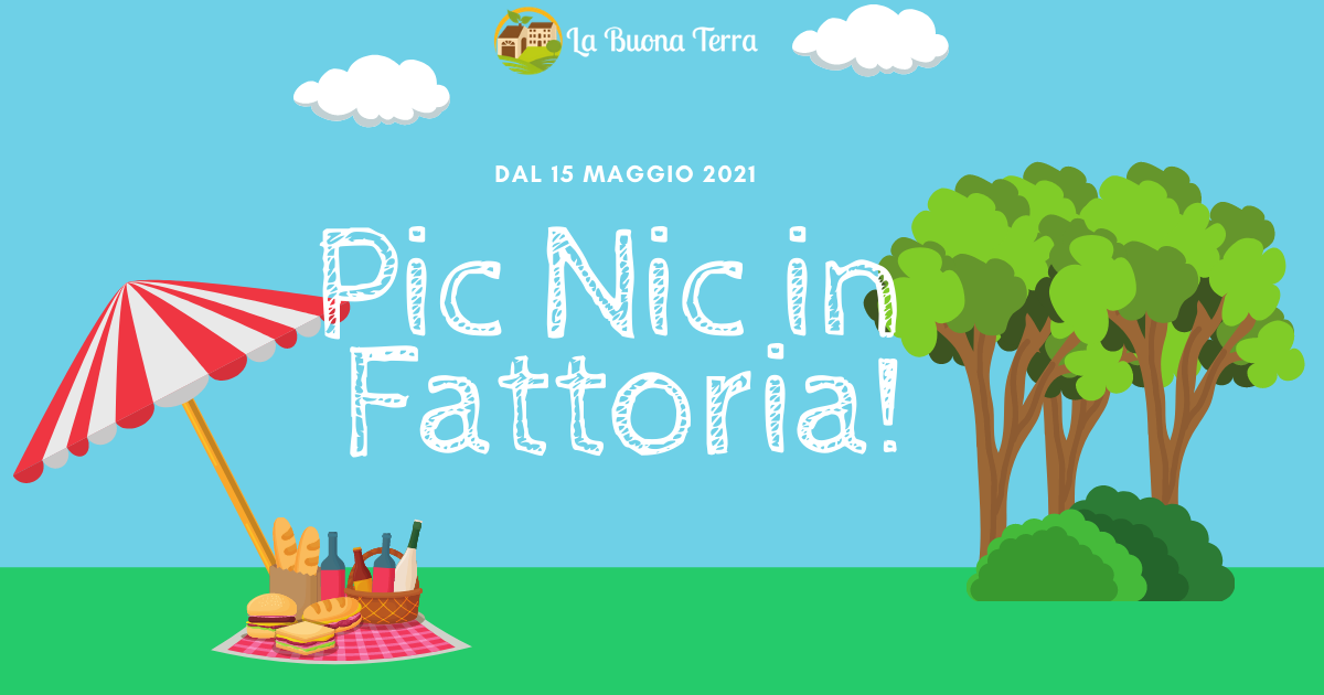 Pic-Nic in Fattoria